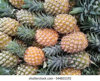 a lot of pineapple textture and background