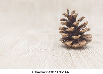 Pinecone on a rustic faded background