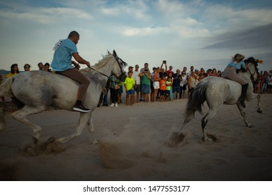 Pinedo/Valencia/Spain-08/12/2019: Photo of horses runnig in the beach