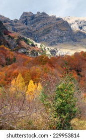 Pineta valley in autumn in the National park of Ordesa.Pyrenees.Huesca.Spain
