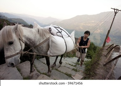PING AN, CHINA - MAY 24: A Zhuong ethnic minority farmer uses the horse to carry sacks of grain up the hill in Ping An, May 24, 2010. The scenic hills of Ping An is a popular tourist destination.