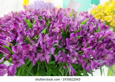 Pink alstroemeria flowers. A large bouquet of soft pink alstroemeria flowers in a flower shop is sold as a gift background.