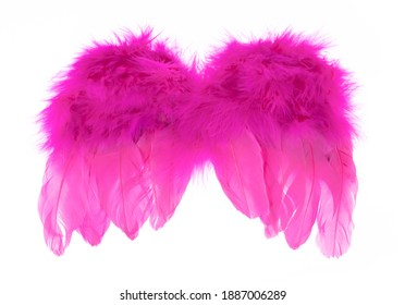 Pink Angel Wings isolated on a white background