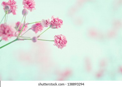 Pink baby's breath flowers on light blue pastel shabby chic textured background, soft and delicate floral pattern