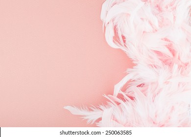 Pink background with feathers