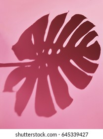 Pink background with shadow