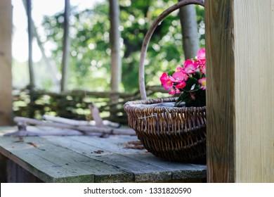 pink begonias in a wicker basket - rural garden decoration