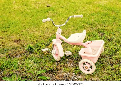 Pink bicycle on green grass in the garden have water in pickup.