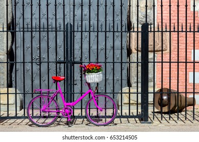 pink bike with white basket full of flowers standing by the old metal fence and metal gate