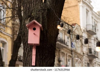 Pink birdhouse. A birdhouse in the city. A birdhouse on a tree.