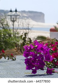 A pink Bougainvillea in a house with a view to the Obidos lagoon and sea, at the silvercoast in the Atlantic coast of Portugal