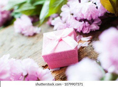 Pink box. Gift for woman. Side view.  Stately flowering Japanese cherry. Sakura. Flowering Japanese cherry. Green leafs. Weeding. Blur background.
