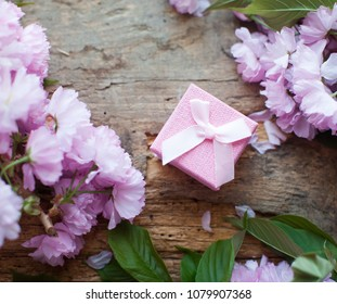 Pink box. Gift for woman. Top view.  Stately flowering Japanese cherry. Sakura. Flowering Japanese cherry
