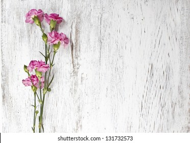 Pink carnation isolated on wooden background