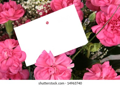 Pink carnations arrangement  and a blank gift tag