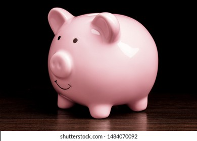 Ceramic Piggy Bank Early Retirement New