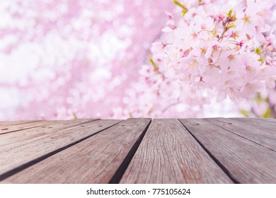 Pink Cherry blossom bloomed in spring season in Japan over old vintage brown wooden table with blurred sakura in background. It can be use as backdrop, tabletop for product or graphic design work.