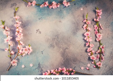 pink cherry blossom twigs frame on gray background, top view, retro toned