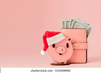 Pink Christmas pig and purse with dollars on the pink background.
