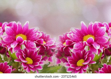Pink Chrysanthemum and bokeh blurred background, oil paint