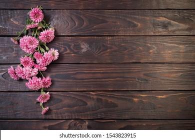 pink chrysanthemums on dark wooden background