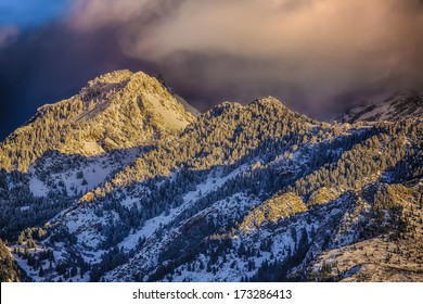 Pink clouds hang over the Wasatch mountains in January after a winter snow storm picture taken from the Salt Lake City Valley Utah USA / Sunset Clouds Over Snowy Pines