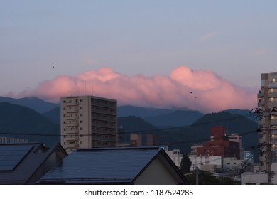 Pink cloudy sky after sunset with three raven in Japan, Yamagata.