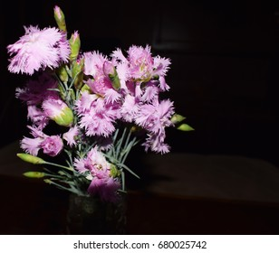 pink clove flower