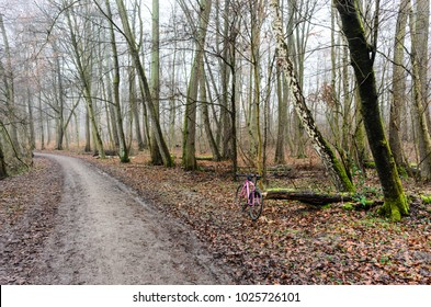 Pink cyclocross bike in a forest