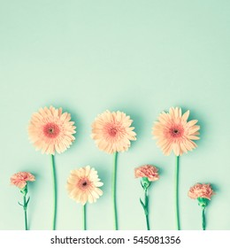 Pink daisies and carnations over mint background