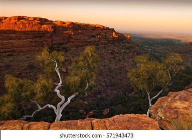Pink dawn skies illuminate bleached trees and vertical cliffs of Kings Canyon in the Northern Territories of Australia