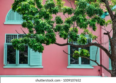 A pink detached house with bright shutter shades.