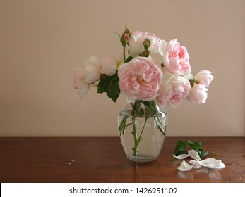 pink english roses in a vase