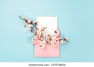 Pink envelope with branches of spring flower and empty white card on blue background. Flat lay, top view. Minimal styled mock up.