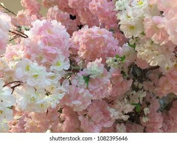 Pink fakeflowers like a sakura