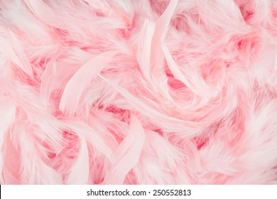 Pink Background Images Wallpapers Pink Backgrounds