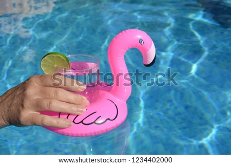 Pink Flamingo Drink Holder Floating Swimming Stock Photo Edit Now