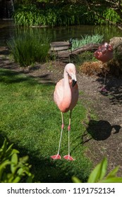 A pink flamingo standing in the sunshine and a second flamingo slepping on one leg in the shade by a pond.