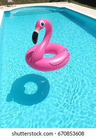 PINK FLAMINGO IN A SWIMMING POOL