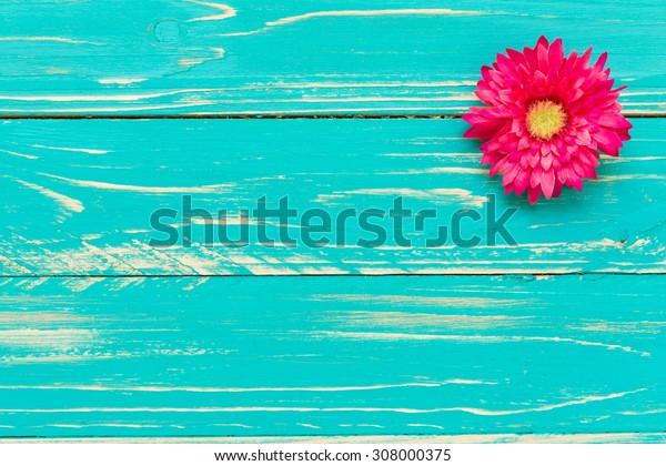 Pink Flower Background