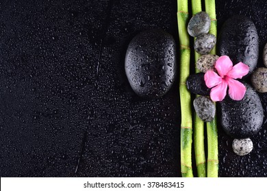 pink flower with black stones and bamboo grove on Wet black background. Spa Concept