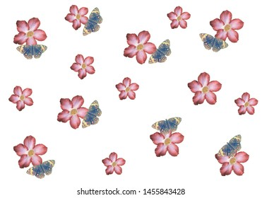 pink flower  with butterfly pattern nature background