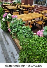 Pink Flower Cafe Terrace Decoration Summer City Centre Landscape