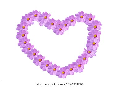 Pink flower of heart shaped for love concepts , can used pink cosmos flower for concepts of Valentine 's day , mother 's day.