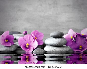 Pink flower and stone zen spa on grey background.