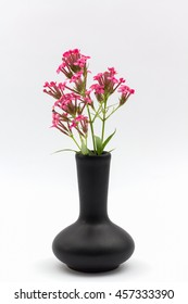 Black flower vase images stock photos vectors shutterstock pink flower in vase black on white background mightylinksfo Image collections