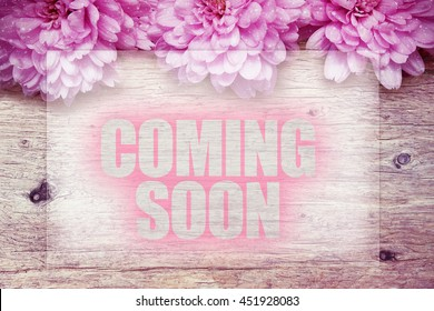 pink flowers on wooden with word Coming Soon