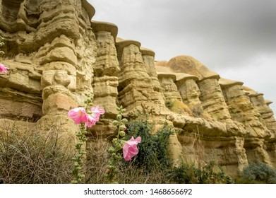 PInk flowers and rock formations in Love Valley, near Goreme in Kapadokya