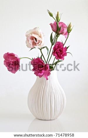 Pink Flowers Vase Stockfoto Jetzt Bearbeiten 71478958 Shutterstock