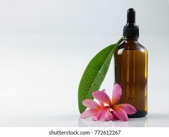pink frangipani with massage oil